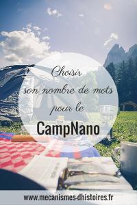 Choisir son nombre de mots pour le CampNano