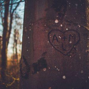 Ecrire une romance _ le développement du couple - article