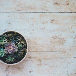 10 questions pour écrire le début d'un roman - article