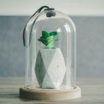 Un article un jour – Comment trouver des idées d'articles – Episode 13